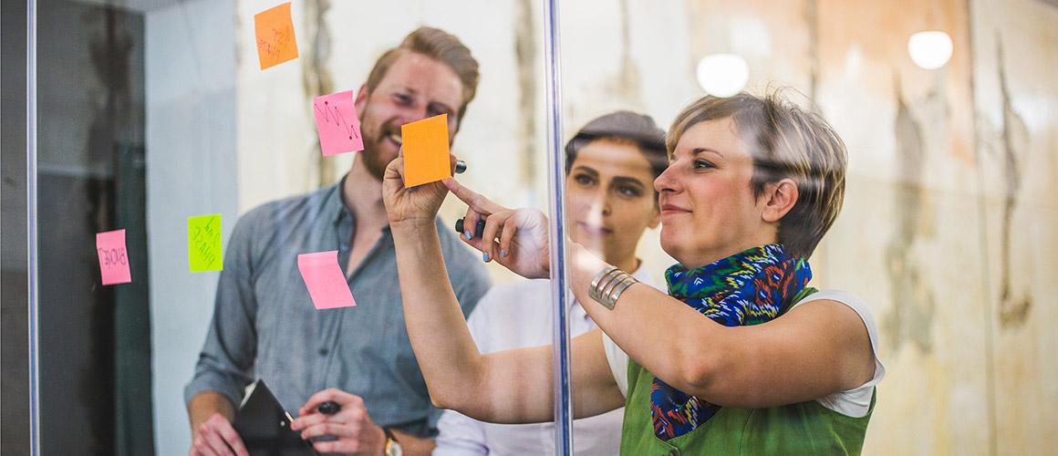 The Fita Institute - How we work